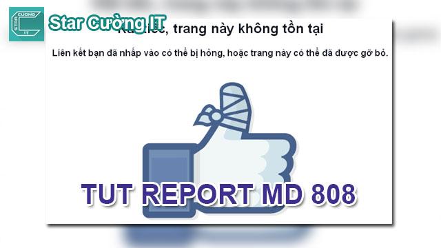 TUT REPORT MẠO DANH 808