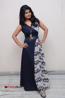 Telugu Actress Alekhya Stills in Blue Long Dress at Plus One ( 1) Audio Launch  0150.jpg