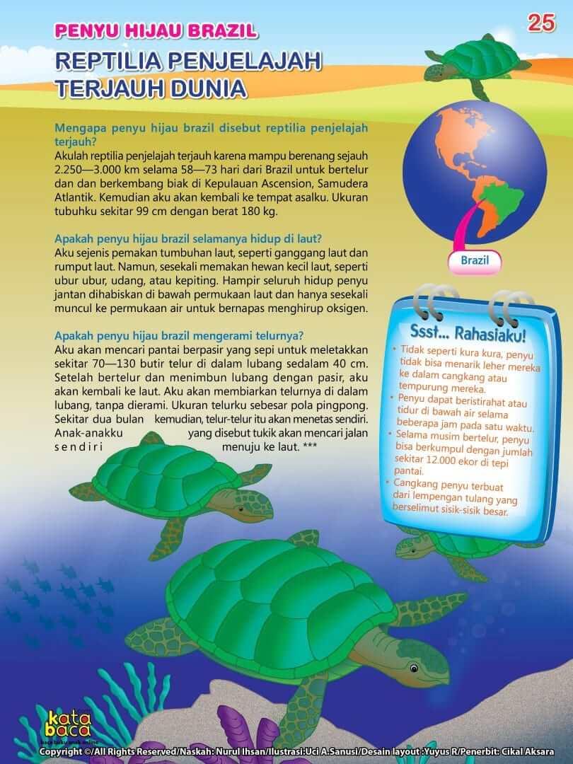 Penyu Hijau Brazil adalah Reptilia Penjelajah Terjauh di Dunia