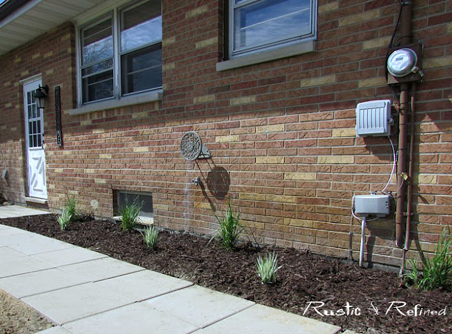 Garden flower bed showcasing native Indiana Grasses
