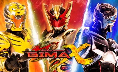 BIMA-X