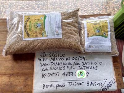 Benih pesanan EDI SUSILO Wonogiri, Jateng.   (Sebelum Packing)