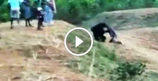 Selfie da morte - Homem tentar tirar foto com urso mas foi atacado