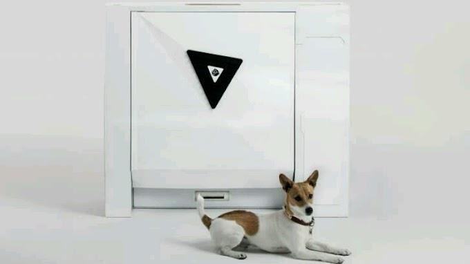 İlk akıllı köpek tuvaleti satışa sunuldu