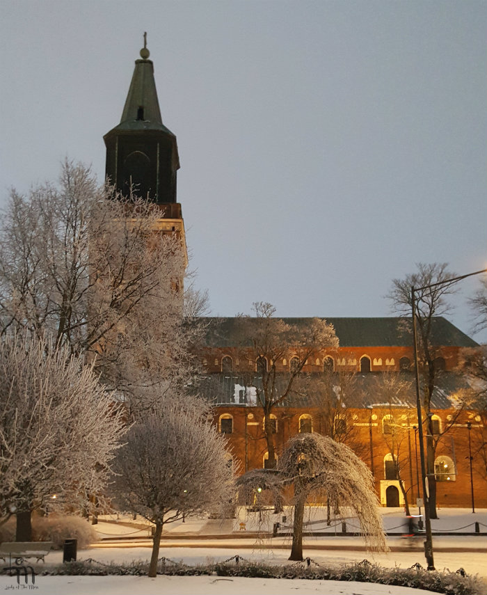 Turun tuomiokirkko tammikuussa 2018