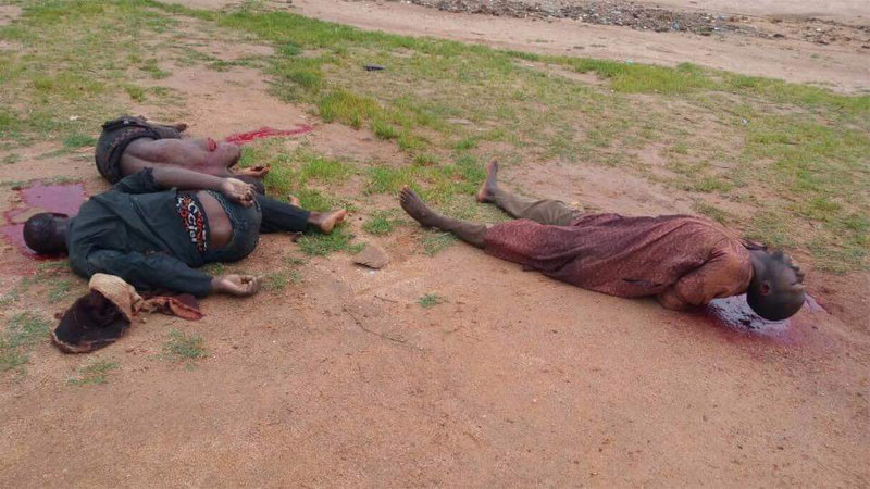 Graphic: Army troops kill cattle rustlers in Kaduna, arrest cable thief in Katsina
