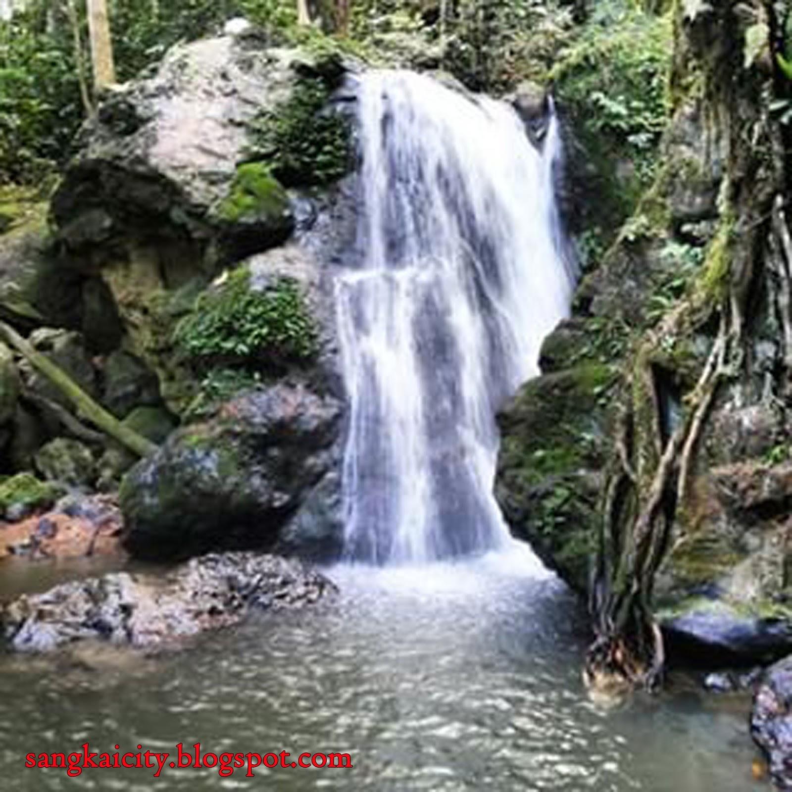 air terjun yang memiliki tinggi sekitar 5 meter panorama alam sangat indah dengan pepohonan ada di air terjun cocok bagi
