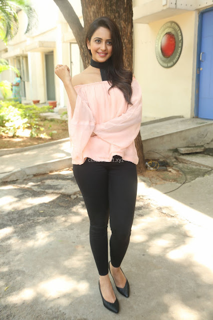 Rakul Preet Singh in lovely Pink Crop Top and Black Trousers at Jaya Janaki Nayaka success meet 005.JPG