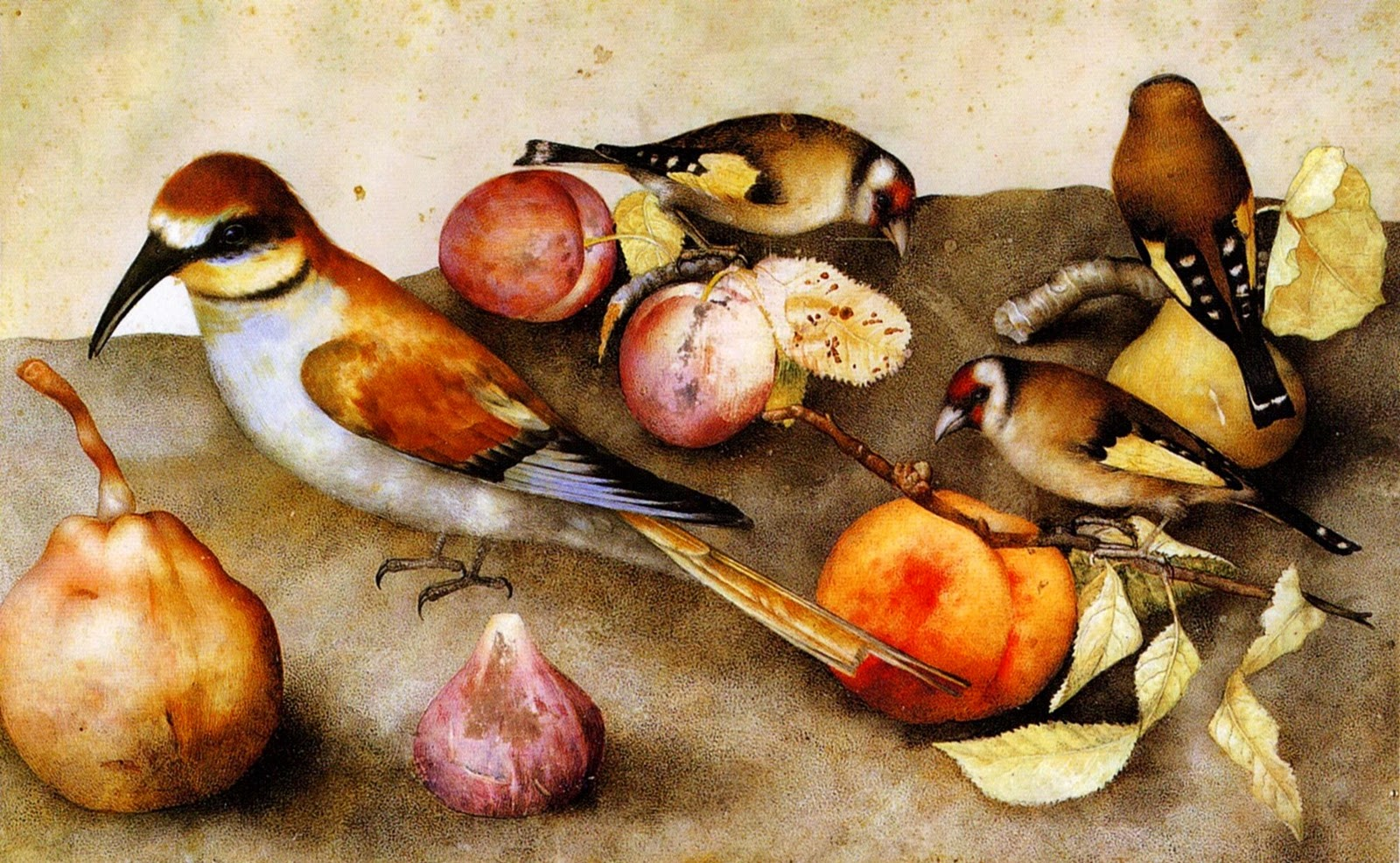Giovanna Garzonni - A Baroque Still Life Painter