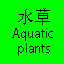 水草 Aquatic plants