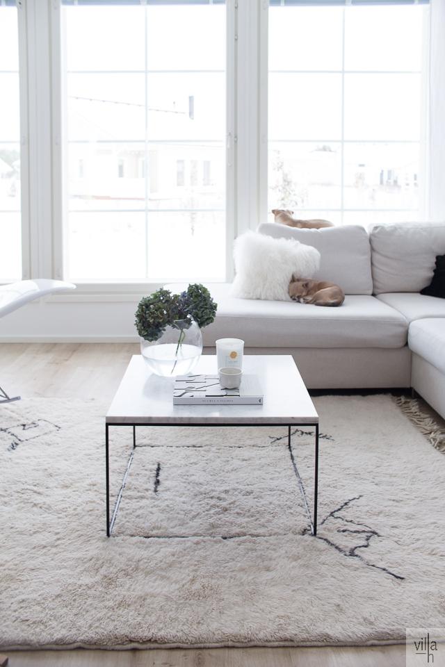 chihuahua, interior, sisustus, beni ouarain matto, marmoripöytä