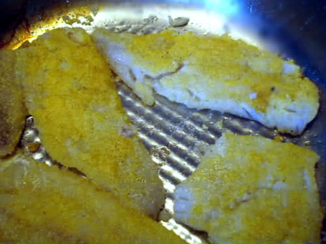 frying white fish fillets