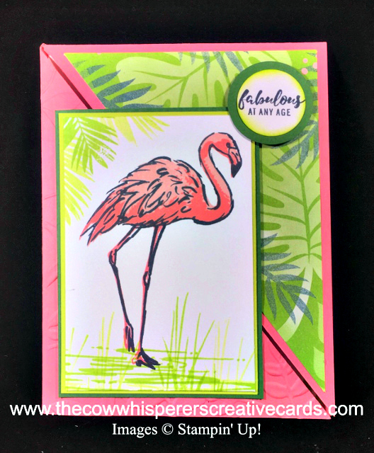 Card, Clean & Simple, Fabulous Flamingo, Fancy Fold