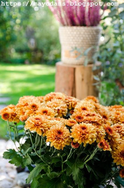 Blumentopf selbstgemacht