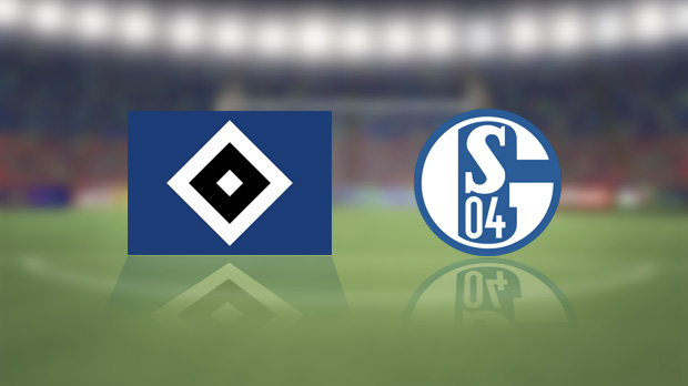 Hamburger SV vs Schalke Full Match And Highlights