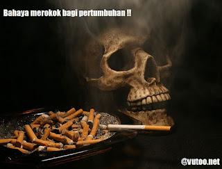 cara menambah tinggi badan bagi perokok