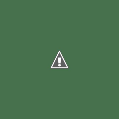 Hai în vacanțe, pe la Saint-Tropez, Florin Salam, manager agenție de turism, imagini amuzante 2018