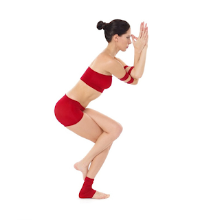 Yoga Garudasana