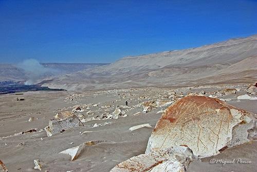 Complejo Petroglifico Toro Muerto