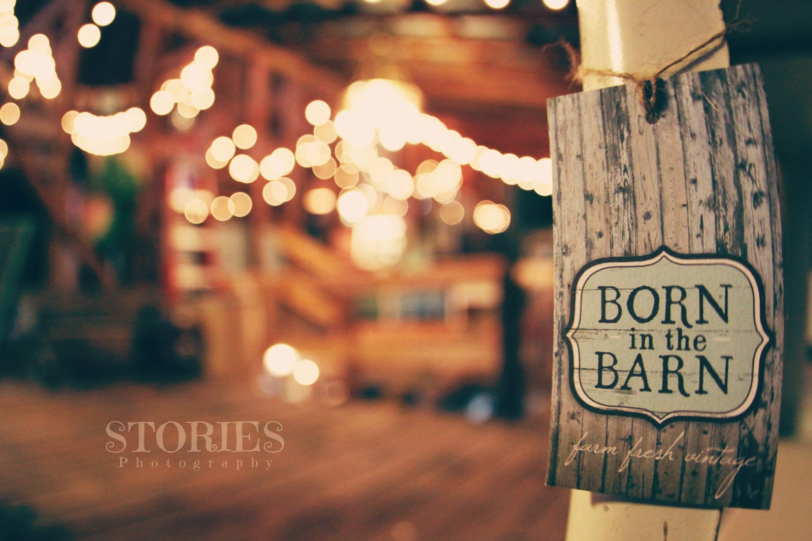 Stories Photography Born In The Barn Photo Shoot