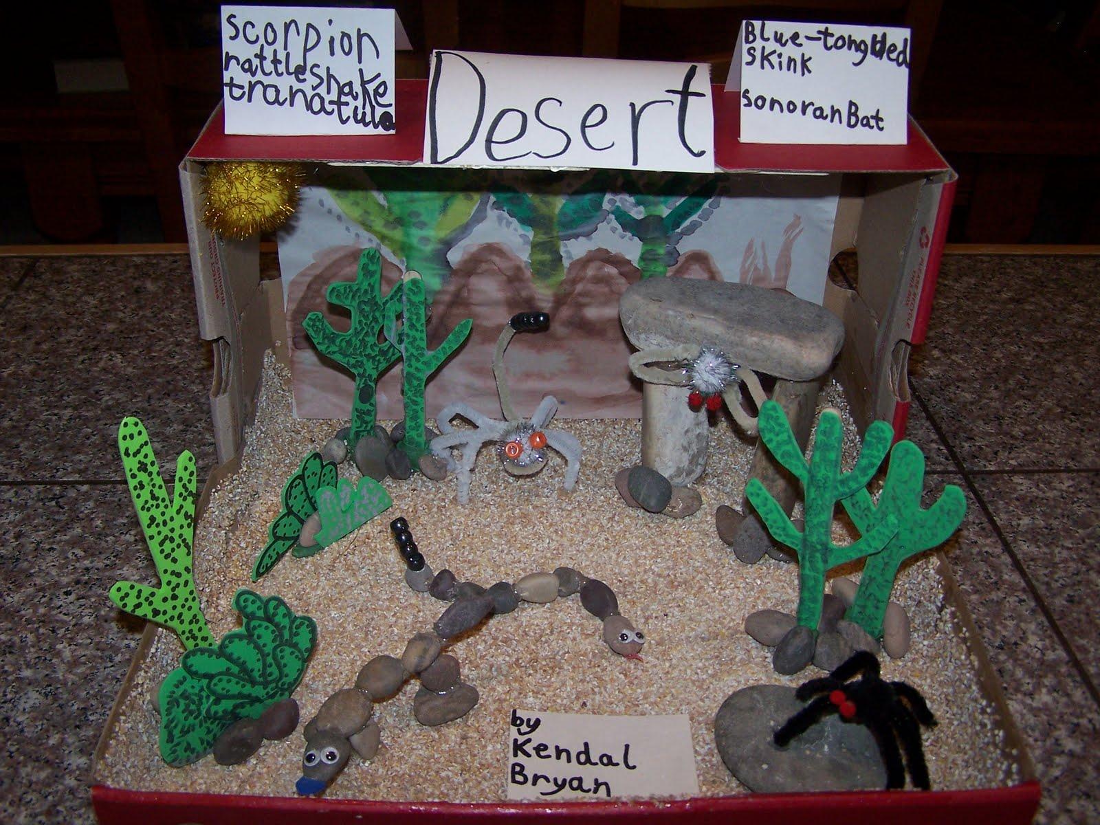 Team Bryan S Home Plate Kendal S Desert Habitat Diorama