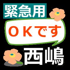 Emergency use.[nishijima]name Sticker