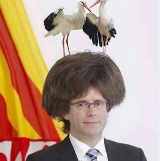 Lo líder de José Miguel Gracia Zapater