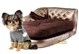 Si usted es uno de esos dueños de perros que siente que su perro no requiere de una cama, entonces están equivocados.