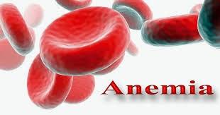 Obat Alami Anemia