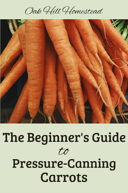 The Beginner's Guide to Canning Carrots