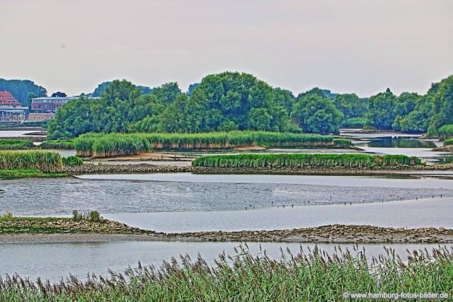 Wandern in Hamburg, Naturschutzgebiet Zollenspieker