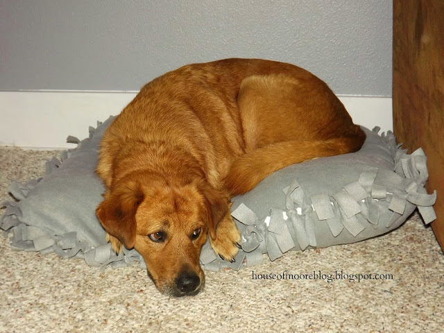 DIY no sew fleece dog bed.