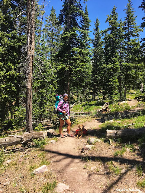 Backpacking the Shingle Creek Trail, Uintas