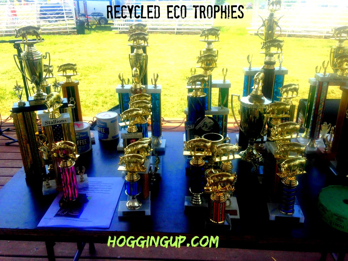 Baltimore Recycle Trophies