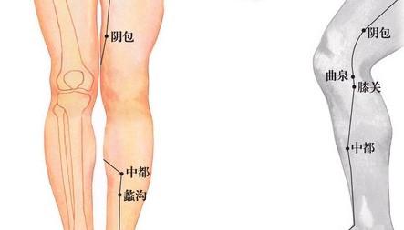 陰包穴位 | 陰包穴痛位置 - 穴道按摩經絡圖解 | Source:xueweitu.iiyun.com