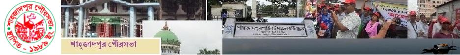 Shahzadpur Paurashava