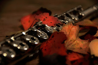 Flute and autumn leaves