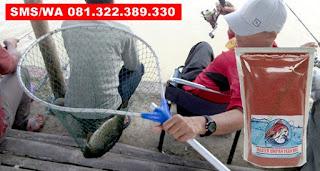 Umpan Khusus Ikan Mas Subang