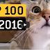 2016 Yılının En İyi 100 Viral Videosu