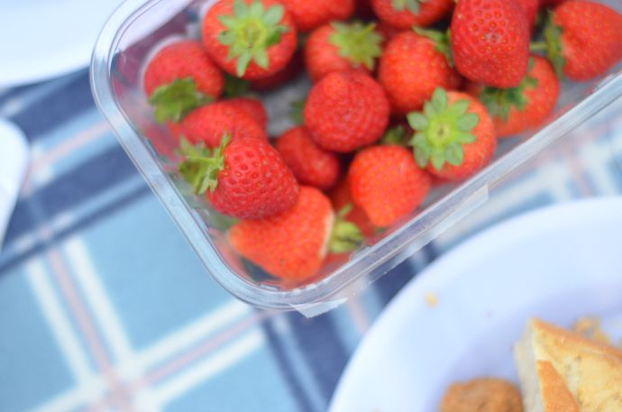 Strawberries, picnic