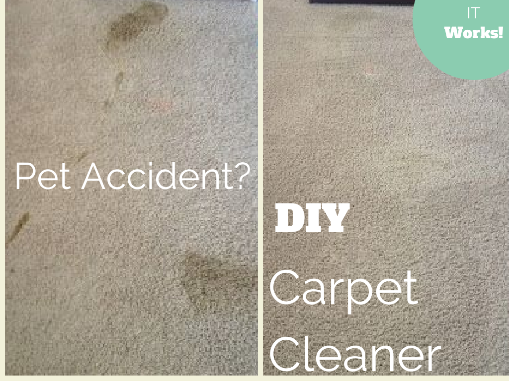 Diy 2 Ingredient Carpet Cleaner With Odor Remover