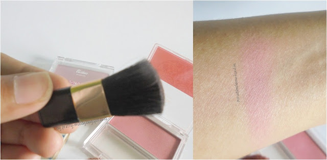 Swatch Fanbo Blush On 01