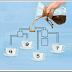 اي كوب قهوة ﺳﻴﻤﺘﻠﺊ ﺃﻭﻻ ؟