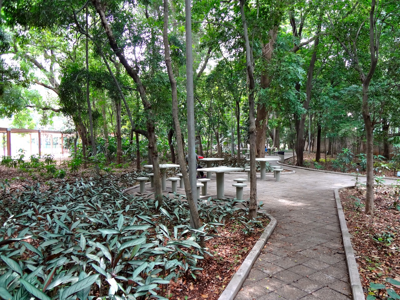 DSC00117 - Série Avenida Paulista: a Villa Fortunata e o parque. Como é o nome mesmo?