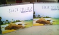http://kedaiherbalku.blogspot.com/2016/12/super-collagen-teripang-soap-sabun.html