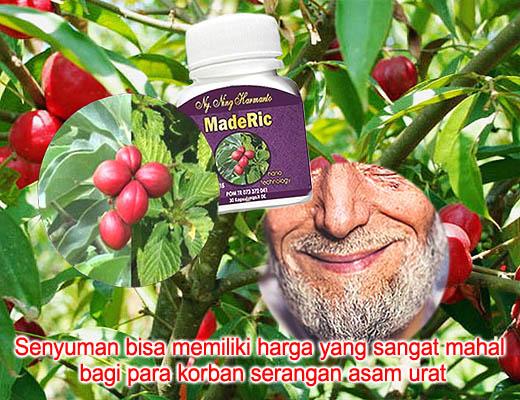 Obat Herbal MadeRic untuk Asam Urat