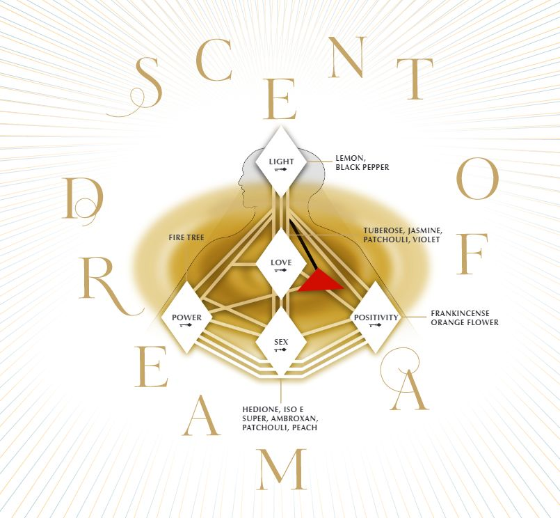 charlotte tilbury scent of a dream fragrance notes