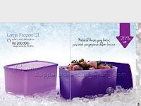 Large Frozen  ~ Katalog Tupperware Promo Juli 2016