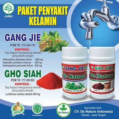 Obat herbal alami untuk penyakit kencing nanah infeksi saluran kencing