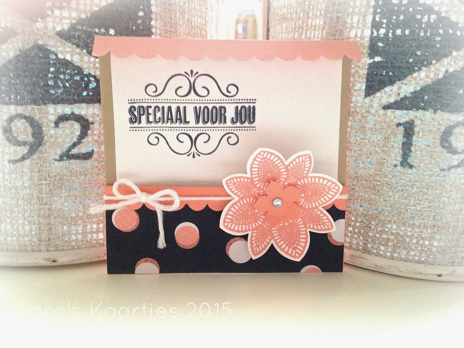 This Stampin' Up! card is handmade by Caro 2015
